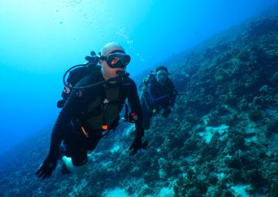 Molokini Back Wall Scuba Dive Tours