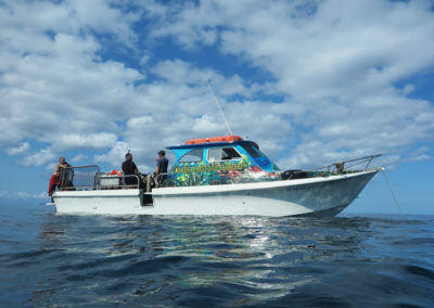 Maui two tank boat dives