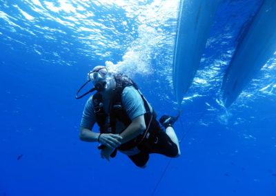private boat dives